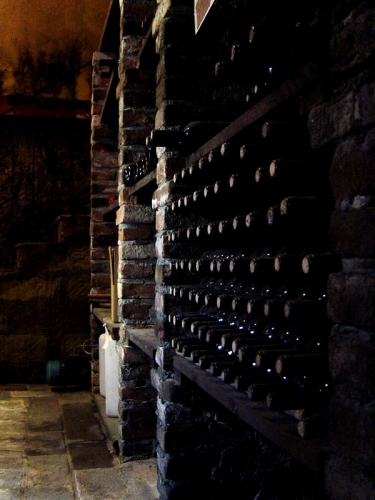 Vinicea | Produzione Vini a Ottiglio (AL)